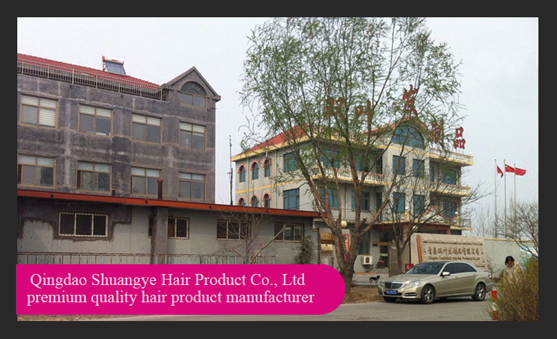 Celebrity indian hair company